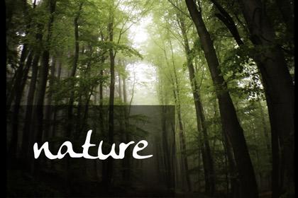 album_nature