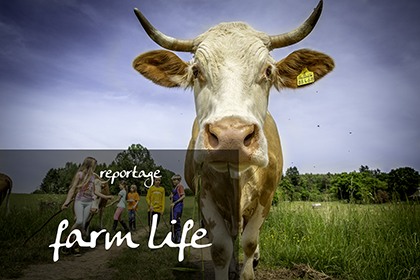 Reportage farm life